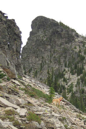 Laddie takes the lead from Middle toward Sawtooth