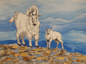 One of two whimsically beautiful watercolors created by Cindy Aase on behalf of the Sandpoint Vegetarians for the silent auction.