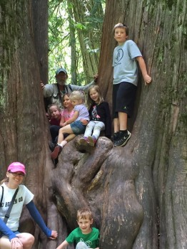 Brian Baxter and participants at FSPW's Community Kids Hike to the Ross Creek Cedars.