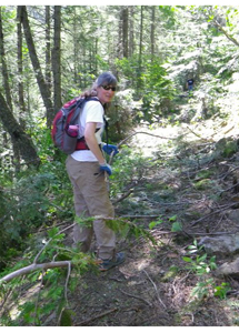 A FSPW volunteer clearing brush on Regal Creek Mine Trail