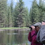 Two participants look for birds during a spring birding outing with Brian Baxter. Photo by Brian Baxter.