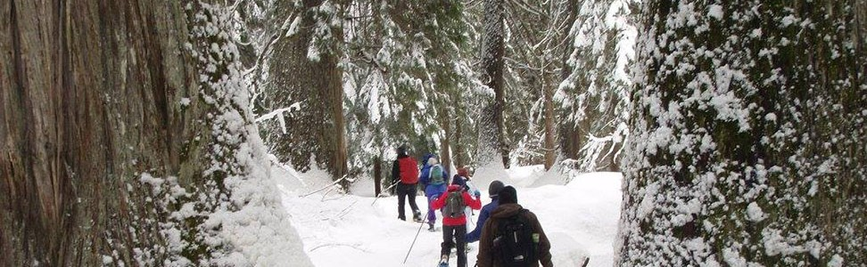 Come hiking with FSPW this winter!