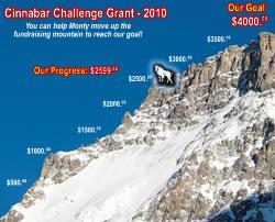 Fundraiser Progress - 2010