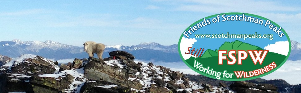 Friends of Scotchman Peaks Wilderness: Same mission, new logo