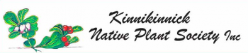 KinnickinnickNPSLogo copy