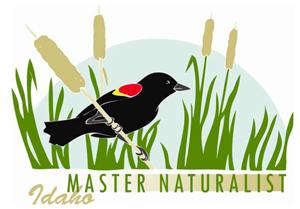 MasterNaturalistLogoForWeb