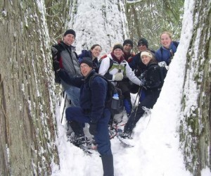 The 2019 Friend of the Scotchman Peaks Wilderness winter hikes include a snowshoe tramp to the Ross Creek Cedars.