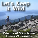 Lets Keep It Wild - 125x125 button 1