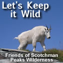 Lets Keep It Wild - 125x125 button 3