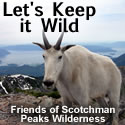 Lets Keep It Wild - 125x125 button 5