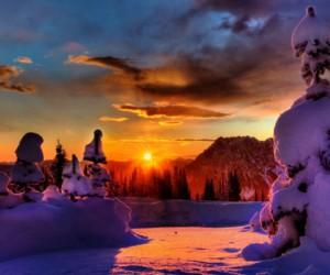 snowy_landscape-wide-1